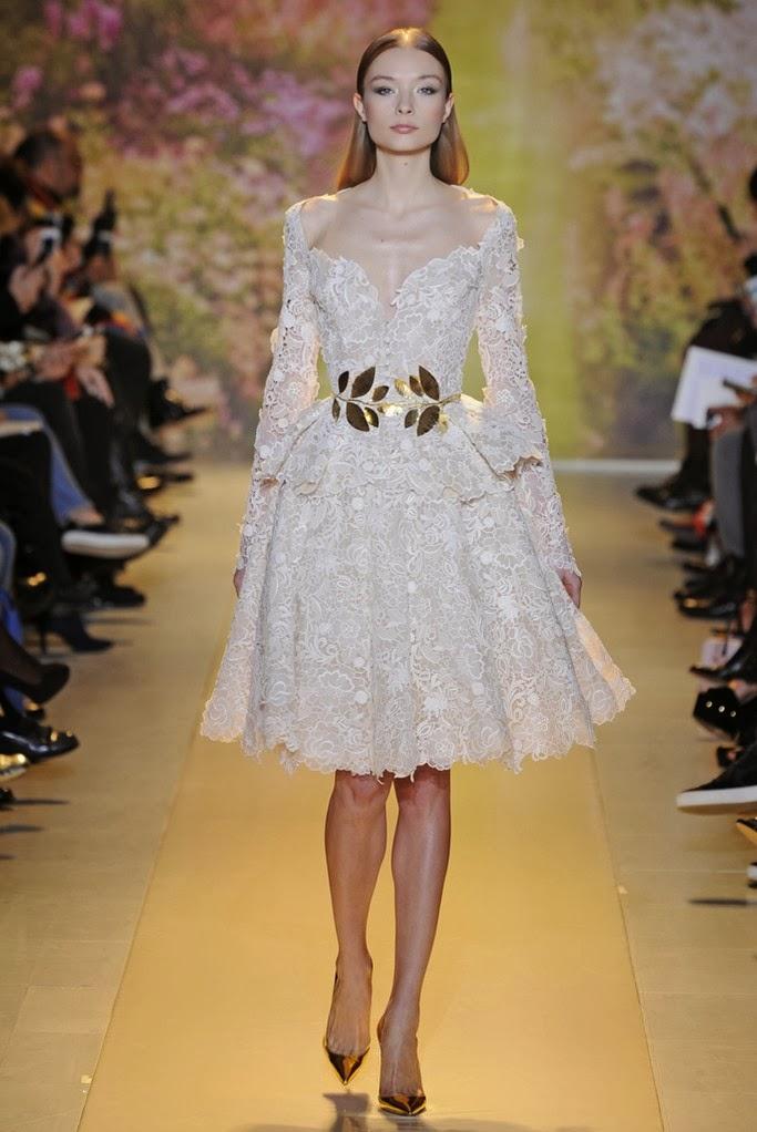 Zuhair Murad Spring Summer 2014 Couture_14