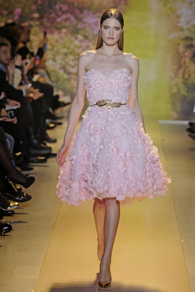 Zuhair Murad Spring Summer 2014 Couture_5