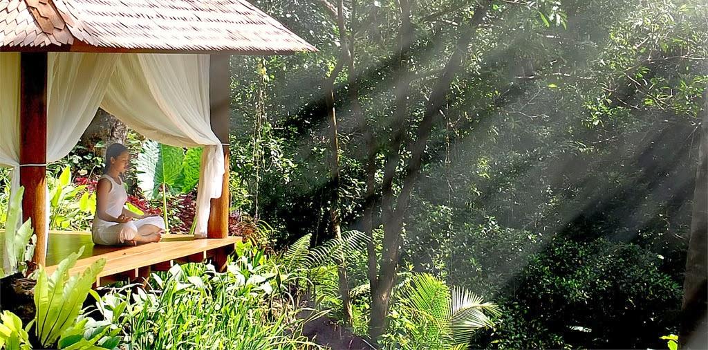 Maya Ubud - Bali, Indonesia 4